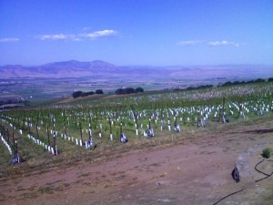 The Salinas Valley from SLH