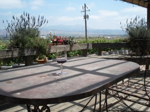 Bloggers Forum 2.2: Paraiso Vineyards