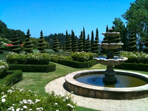 The garden at Newton Vineyard
