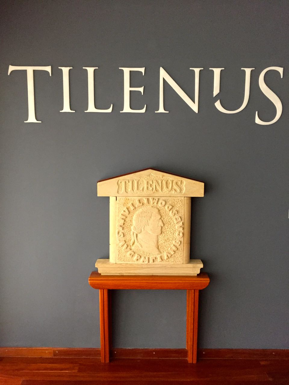 Relief of the Roman coin of Bodegas Estefanía & Tilenus. #OleWinos MGWines Group